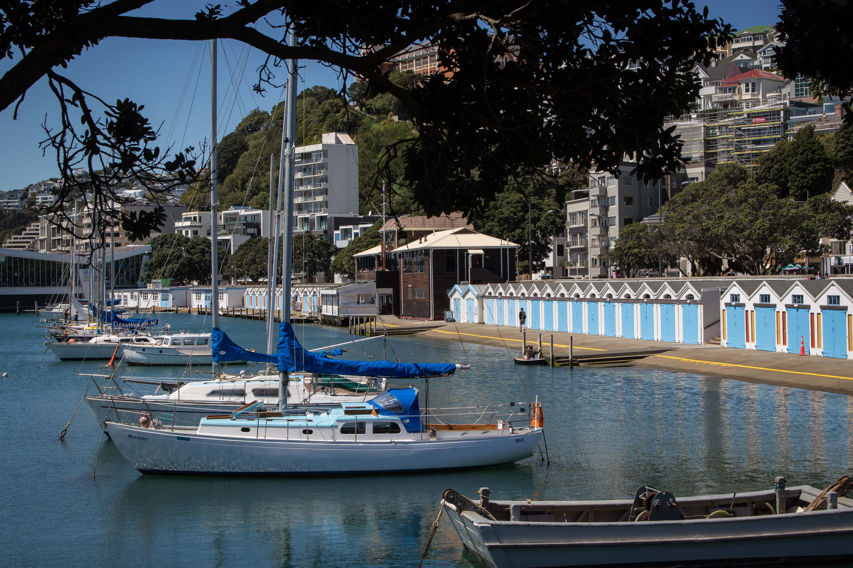 Boote in Oriental Bay, Wellington