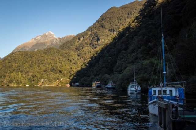 Boote in Bucht vom Doubtful Sound